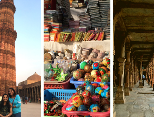Five places I loved visiting in New Delhi on my wheelchair
